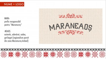 Maramures 160318-page-010