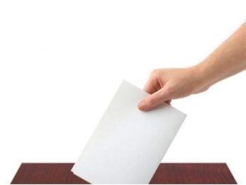 vot.jpg-350x263