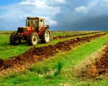 desi avem potential, nu avem o agricultura moderna