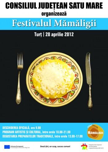 Festivalul Mamaligii de la Turt