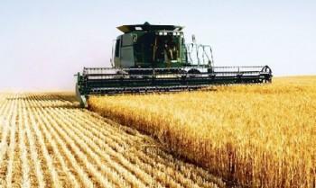 Agricultura a avut o contributie importanta la cresterea economica de 3,5%
