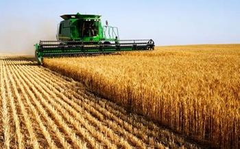 A început secerişul grâului