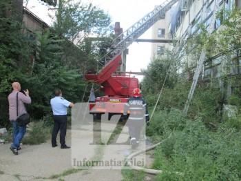Interventia pompierilor a fost ingreunata datorita vegetatiei