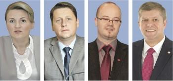 Deputati de Satu Mare