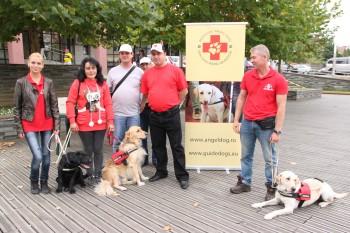 Cei care doresc să sprijine organizarea taberei pot obţine mai multe informaţii de la reprezentantul Angel Dog, telefon 0742.979.209 sau pe www.angeldog.ro