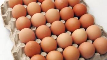 Au fost confiscate 94.000 de oua de la o ferma avicola