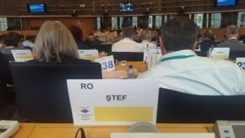 in sedinta plenara