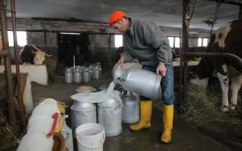 livrare lapte