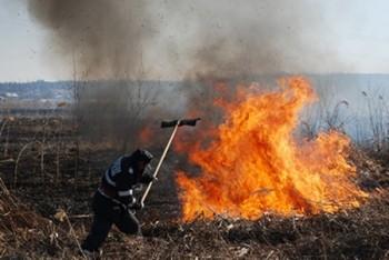ppompierii au intervenit şi la incendiile vegetatie uscata