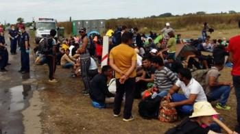 grup de imigranti opriti de politia maghiara