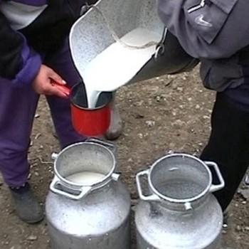 criza a dminuat veniturile producatorilor de lapte