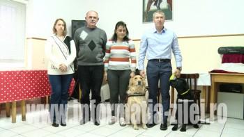 Angel Dog organizează an de an, din 2009 încoace, o serie de acţiuni menite să vină în sprijinul persoanelor cu dizabilităţi prin terapie asistată cu animale