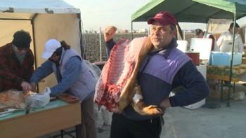Concurs de taiat porci in Lazuri