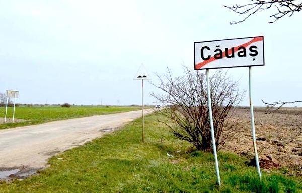 cauas