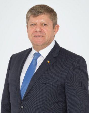 Octavian Petric, deputat PSD