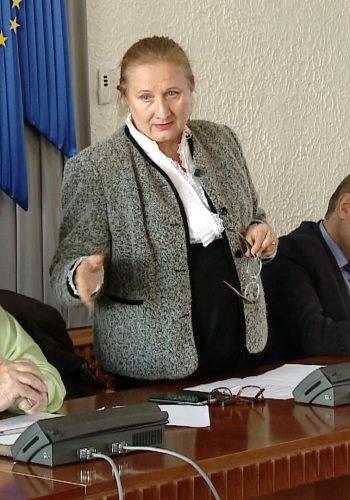 Membrii Uniunii Patronatelor s-au intalnit cu candidatii satmareni la Parlament