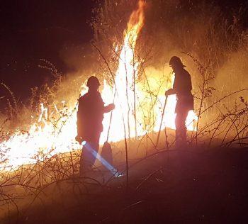 A fost nevoie de 14 subofiţeri pentru lichidarea unui incendiu de vegetaţie