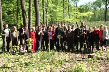 Voluntarii au muncit mai bine de 2 ore pentru a planta sutele de puieti de stejar