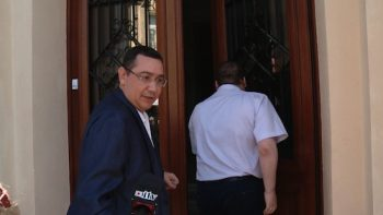 Ponta la intrarea Tribunalului Satu Mare