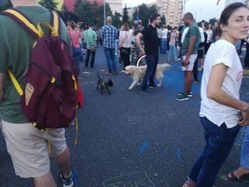Proteste in Piata Victoriei impotriva modificarilor aduse Codului Civil