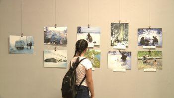 Imagini din expoziţie