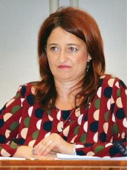 Noemi Gyure, arhitect sef al Judetului